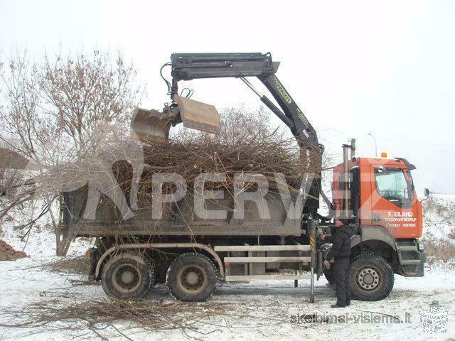 Medžių pjovimas ir šakų išvežimas