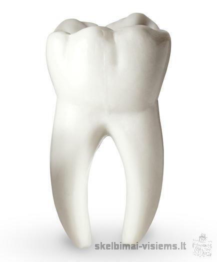 NEMOKAMAS dantų gydymas Kaune