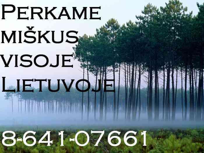 PERKA MIŠKĄ SU ŽEME AR IŠSIKIRTIMUI, BRANGIAI, VISOJE LIETUVOJE8-641-07661