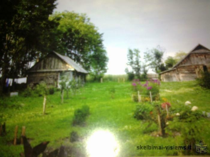 Parduodame sodybą su ūkiniais pastatais