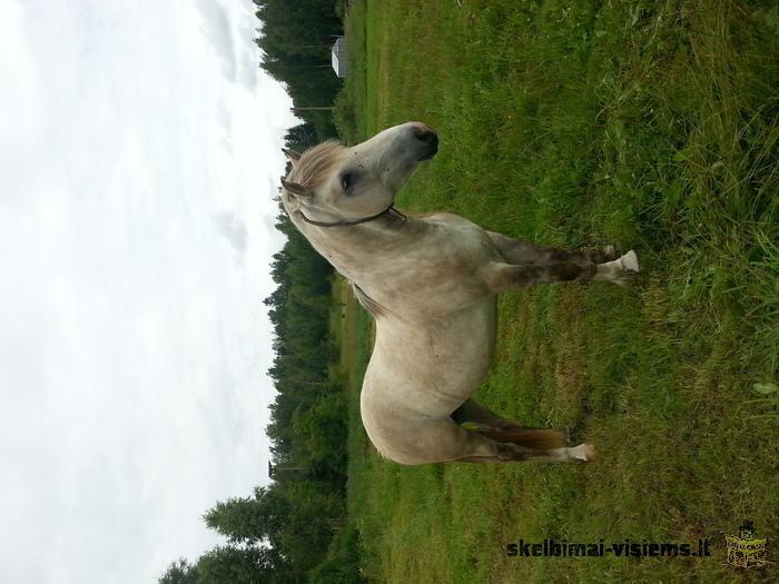 Parduodu arkli