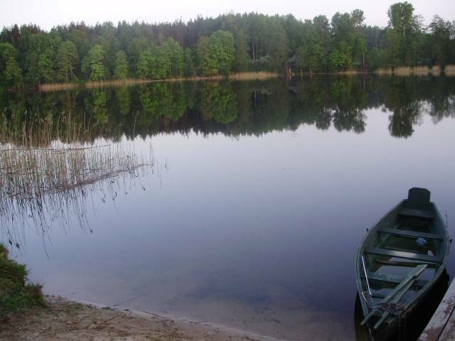 Puikus ir nebrangus poilsis sodyboje šalia ežero Utenos r.