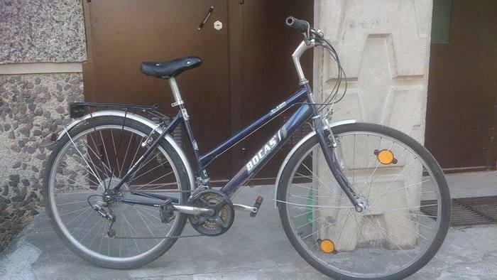 Puikus universalus dviratis seimai