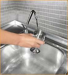 Zepter vandens valymo filtras PIGIAI
