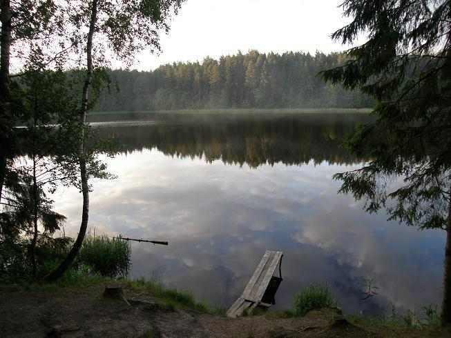 Продаётся настоящий хутор усадьба в лесу у воды- лесная река рядом озёра на Белорусском Поозерье. В